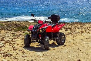 Buggies Lanzarote - 42992 opportunities