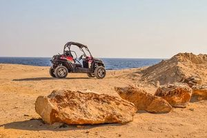 Buggies Lanzarote - 17490 options