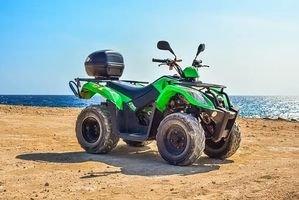 Buggies Lanzarote - 48561 prices