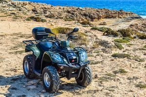 Buggies Lanzarote - 1886 customers