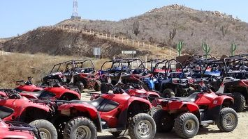 Buggies Lanzarote - 18150 customers