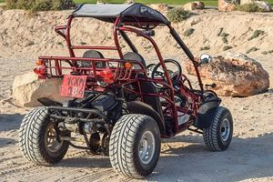 Buggy - 95926 awards